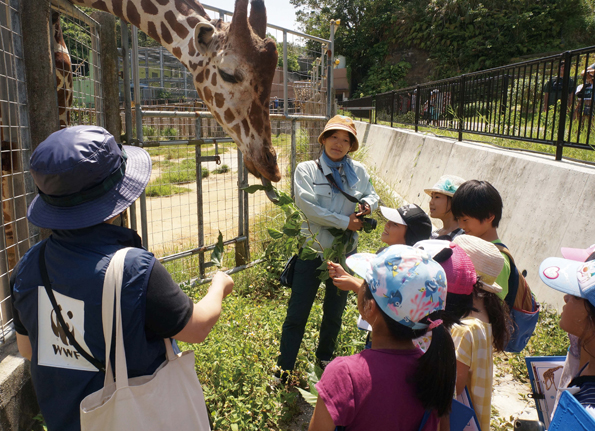 沖縄こどもの国で実施したワークショップ。実際に動物を見ながら「におい」を確認する