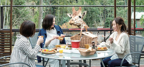 キリンと一緒に朝食が楽しめるプランをオプションで用意(要予約。大人2,000円)